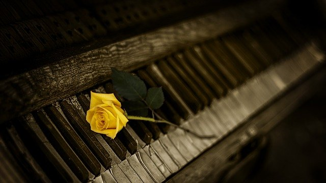 Perché i tasti del pianoforte sono oscuri e bianchi?